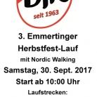Herbstfest-Lauf 2017
